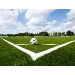 Искусственный газон для футбола Stadio S45 белый