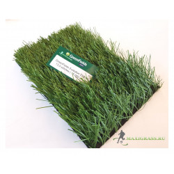 Искусственная трава GreenFields Evolution Elite