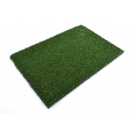 Искусственная трава Sintelon Greenland